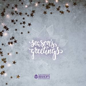 Season's greetings card showing sparkly stars