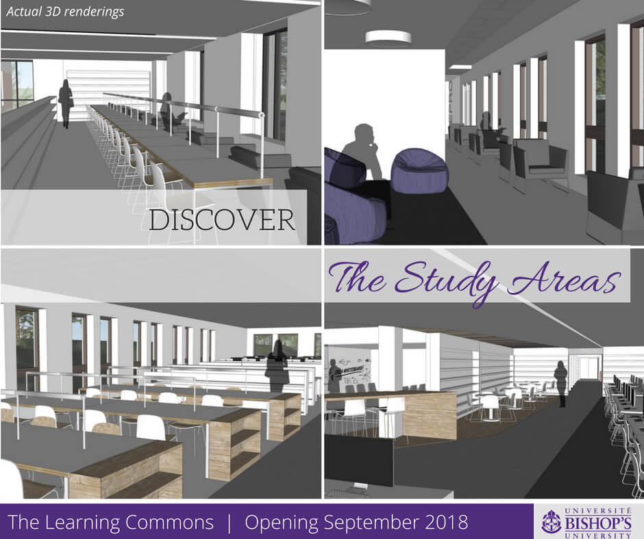 Study Areas in the Learning Commons