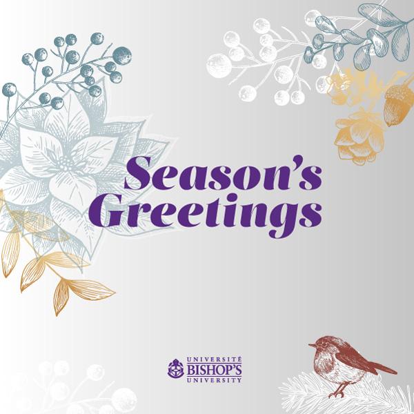 Winter Bird holiday card